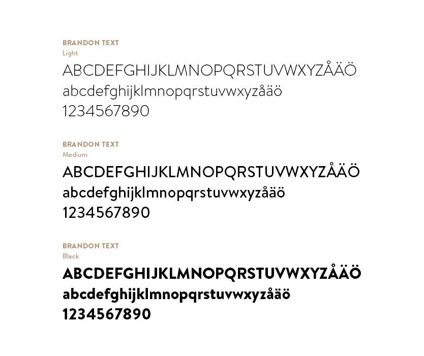 Messeforum_fonts